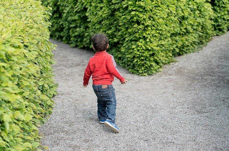 child-1721906_960_720-788x520